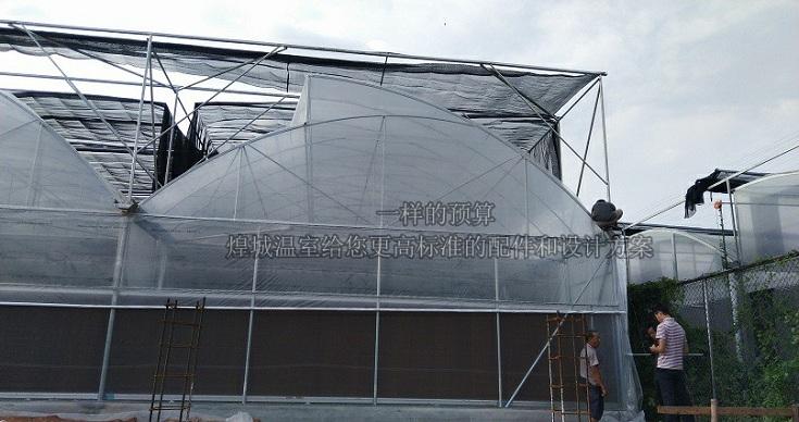 锯齿大棚-煌城温室锯齿形大棚图片